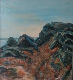 Written in the Rocks - Acadia National Park